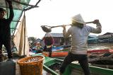 Image gallery of Cambodia's floating villages.