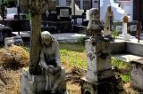 Image gallery of Living among the dead.