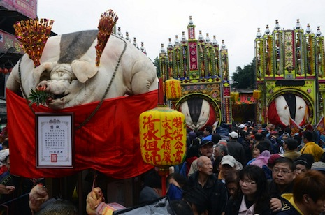 The pigs are displayed in a procession outside the temple in Shanhsia (AFP photo/Sam Yeh)