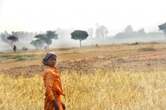 Tribal people face constant land grab threat