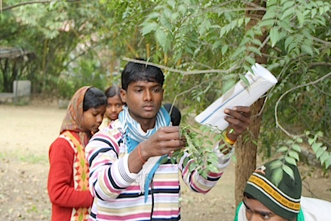Tackling India's environment problems from the ground up
