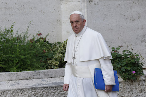 Pope says ministry to divorced, remarried isn't synod's only topic
