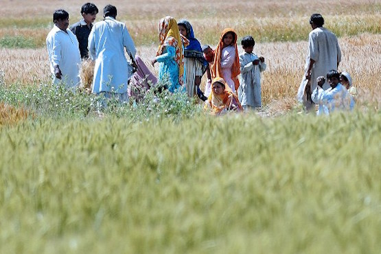 Pakistan uses terrorism laws against protesting farmers
