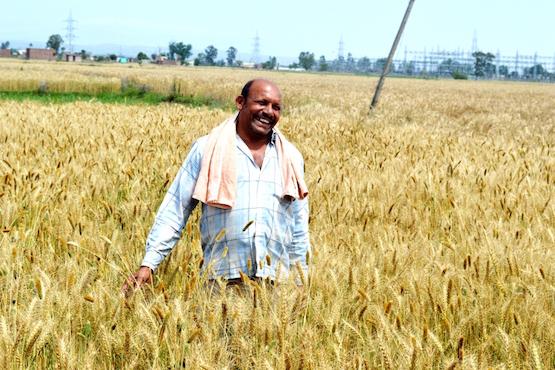 Caritas helps Kashmir farmers go organic