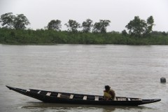 Call for revoking industries near vital forest in Bangladesh