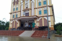 Church brings relief to flood victims in central Vietnam