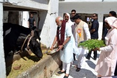 Indian nationalists increase cow slaughter penalty