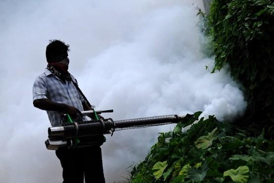 Sri Lankans to use prayer power against dengue epidemic