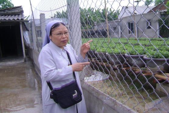 Nuns help Vietnamese farmers adapt to climate change