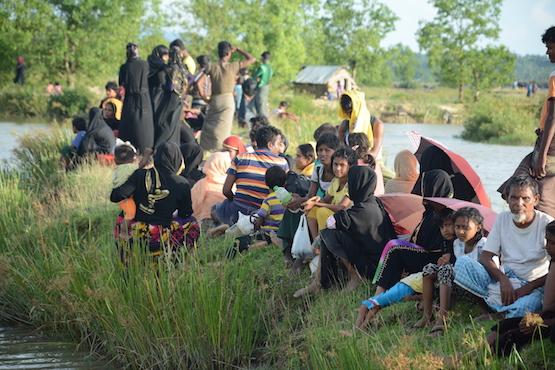 Rohingya crisis intensifies ahead of papal visit