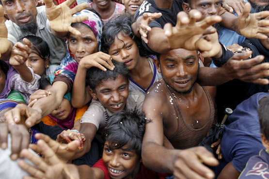Indonesia offers to be Muslim world's mediator in Rohingya crisis
