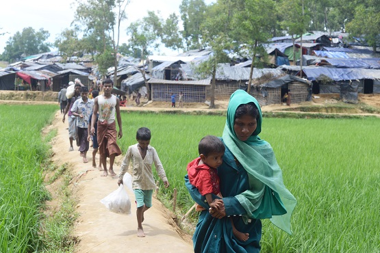 Myanmar reaps the benefit of abandoned Rohingya land