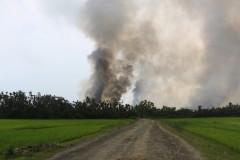 Myanmar investigates mass grave in Rakhine