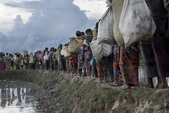 Forced starvation prompts fresh Rohingya exodus