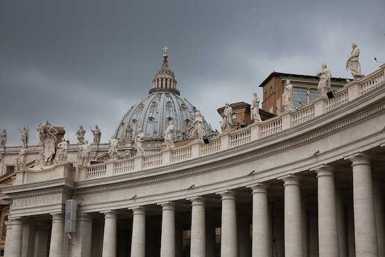 China at Vatican organ trafficking talks is 'window-dressing'