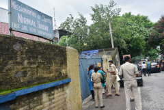 All Missionaries of Charity homes in India to be inspected