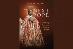 Author examines key issues he says Pope Francis' successor must face