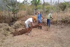 Organic garden empowers Indonesian Catholics