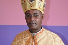 Concern grows over safety of bishop in Ethiopia