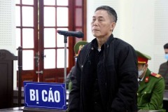 Vietnamese poet jailed for 12 years for subversion