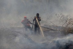 Indonesian province declares 8-month peat fire emergency