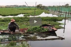 Cambodian farmers hit by lake project