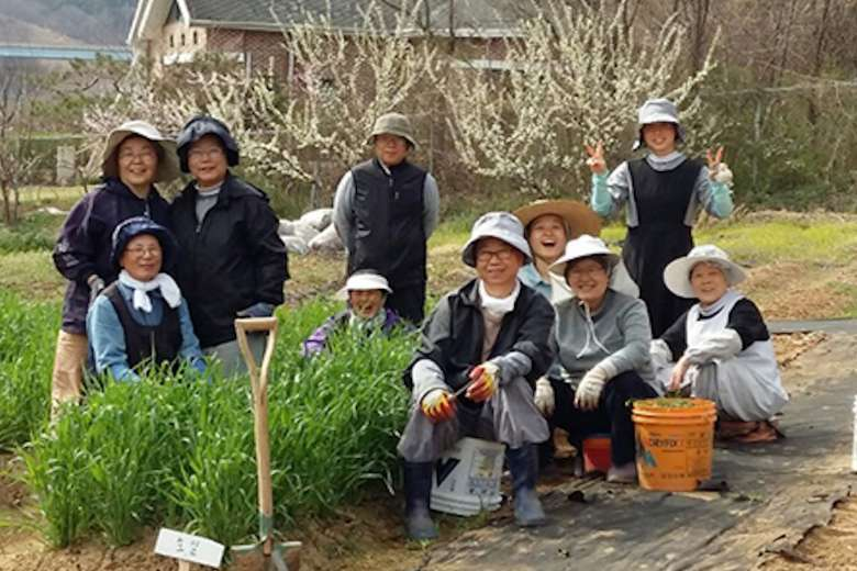 Green-fingered South Korean nuns toil to safeguard creation