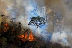Catholic investors urge Brazil's government to protect Amazon
